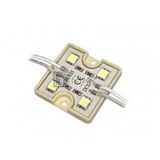 Модуль PGM5050-4 12V IP65 Day White
